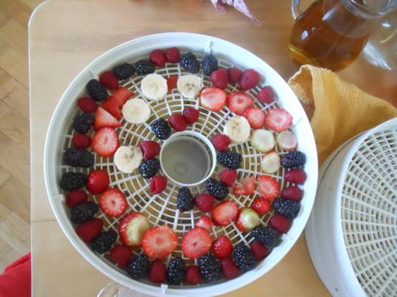 sušíme ovoce